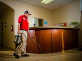 Pest Control Companies: The Perfect Sources To Keep The Office Pest Free