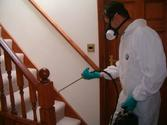 Definite Reasons to Hire Pest Control for your Home