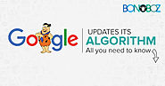 Google Updates its Algorithm - All You Need to Know - Bonoboz.in