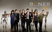 Watch Bones series Online :: Couchtuner Version 2.0