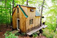 Young Couple Builds Cabin in the Forest for $4,000