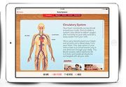 Class Tech Tips: DIY Human Body for Science Activities
