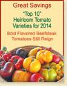 The Best Varieties for Tomato Lovers