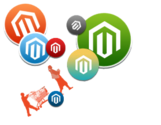 Hire best Magento developer & SEO in India