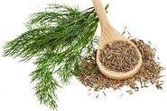 Over-Indulgenced In Alcohol And Nicotine? Get Detoxified With Organic Fennel Sweet Essential Oil!