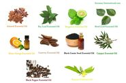 The 'Perfect Ten' Essential Oils That Spell Health For You!