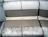 Boat Covers Prevent Fading, Molding, and Mildew