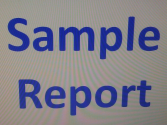 Sample Sellers Report
