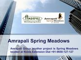 Amrapali Spring Meadows Noida Extension @9650-127-127