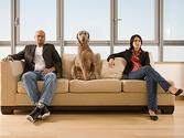 Divorce: who gets the pets? - San Antonio Divorce Center