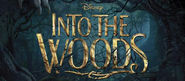 Get A Look Inside Disney's Into The Woods