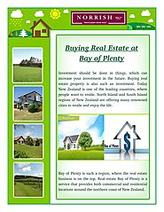 Why Buy Real Estate in Bay of Plenty?