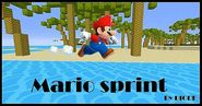 Mario Sprint Map 1.8/1.7.10 and 1.7.2