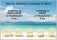 Timeshare Rentals - Everything You Wanted To Know About Them