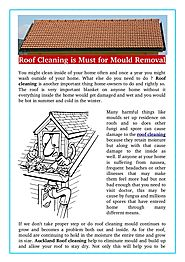 Roof Cleaning is Must for Mould Removal