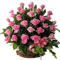 Send Flowers to India : Flowers Delivery India Online