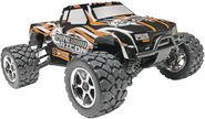 Do you get an RC Monster Truck or a Buggy? Our TOP tips!