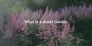 What is a shade Garden