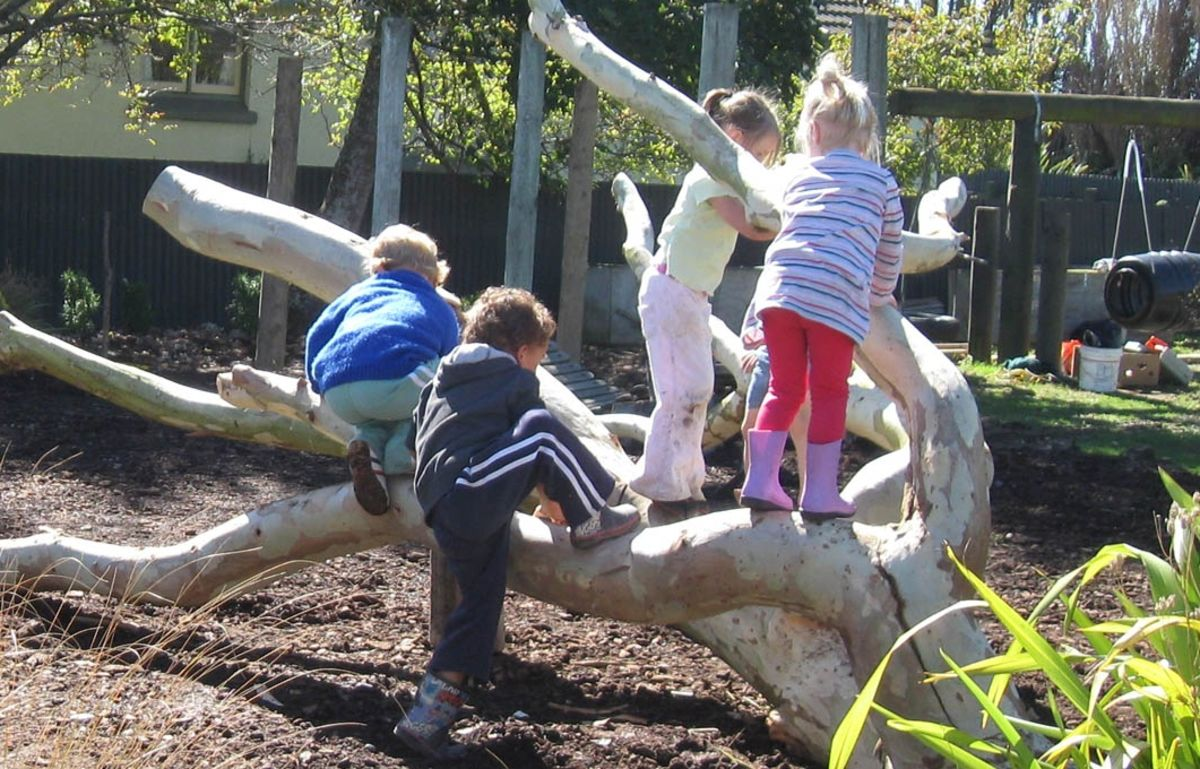 Headline for Natural Playgrounds & Free-play