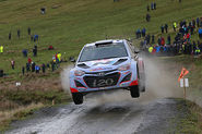 WRC news: Hyundai drops WRC driver rotation for 2015 season
