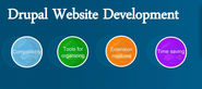 Why You Should Opt For Drupal Web Development For Next Website Project?