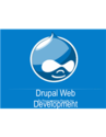 Are You Tired Of Encountering False Drupal Web Development Companies?