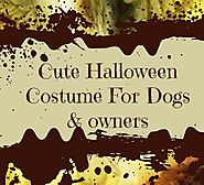 Cute Halloween Costumes For Dogs And Owners Everyone Loves