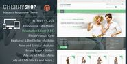 My Webtricks: Best 15+ Magento Fashion Themes & Templates