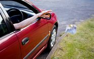 Why don't you clear your car out of litter by chucking it out the window?