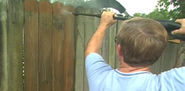 How to Clean and Maintain a Wood Fence | Today's Homeowner
