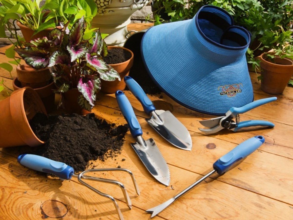 Headline for Best Gardening Blog for Garden and lawn maintenance tips