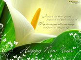 Happy New Year Messages 2015 | New Year Wishes Greeting