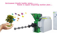 How briquetting machine exporters spreading pollution free method?