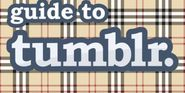 The unofficial, beginner's guide to tumblr