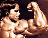 How to Get Bigger Arms - Everything Need to Know