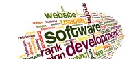 Various Phases of Software Web Application Development