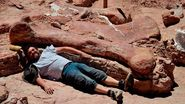 Largest titanosaur discovered http://www.bbc.com/news/science-environment-27441156