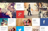 Social WordPress Theme