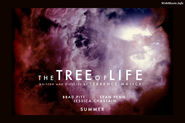 2011-The Tree of Life