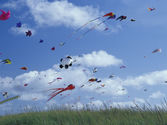 Fly a Kite Day