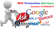 Gain More Business by Professional SEO Promotion Services