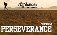 All About Perseverance | Business, Social Media, Technology and more – Appitive.com – Your Daily Appetizer