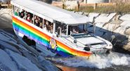 Boston's Duck Tours are Ready for a Winner's Parade!!