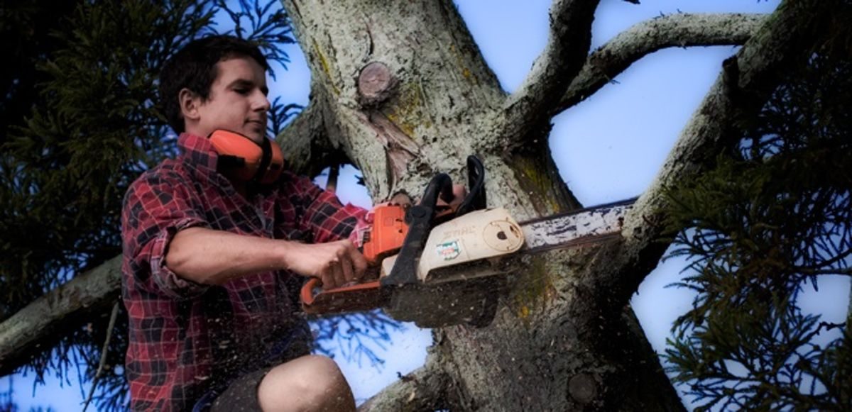 Headline for Best Electric Chainsaw Chain Sharpeners