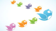New research sheds light on 13 ways to gain followers on Twitter | Neurobonkers | Big Think