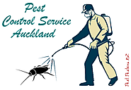 Use Least Toxic Method To Prevent Pest