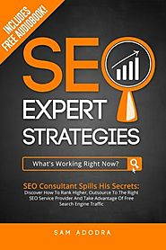SEO Expert Strategies: Discover How To Outsource To The Right SEO Service Provider