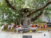 Explore the Giant Buddha Temple and the Shri Pushparama Temple