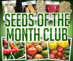 Mike the Gardener`s Seeds of the Month Club