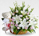 Florist in Delhi - Send Fowers to Delhi Sameday Midnight